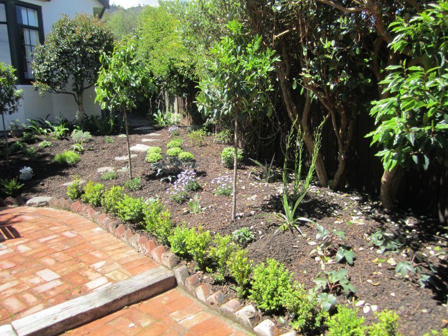 Garden planting Wellington garden maintenance Kapiti Coast